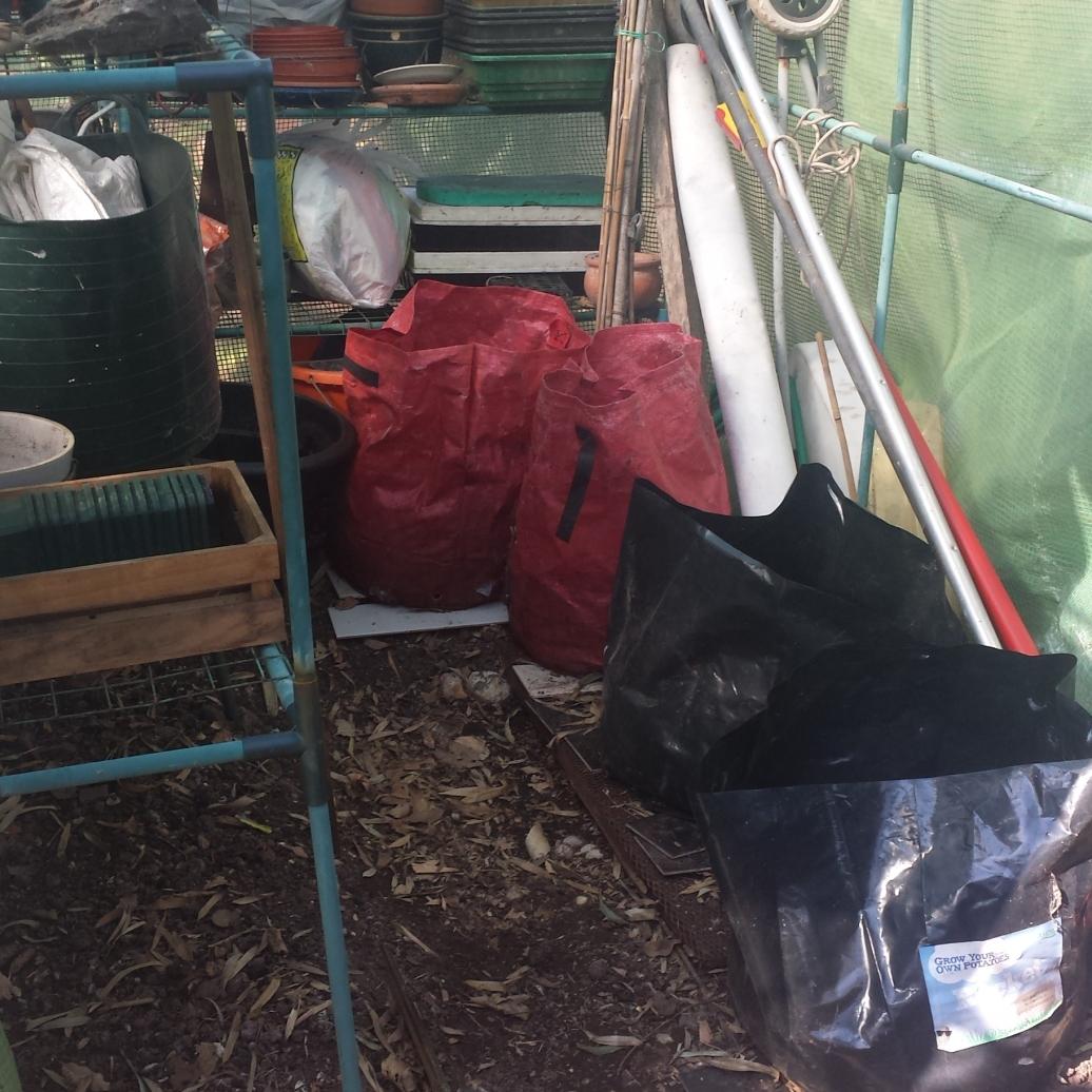 my storage greenhouse tidied