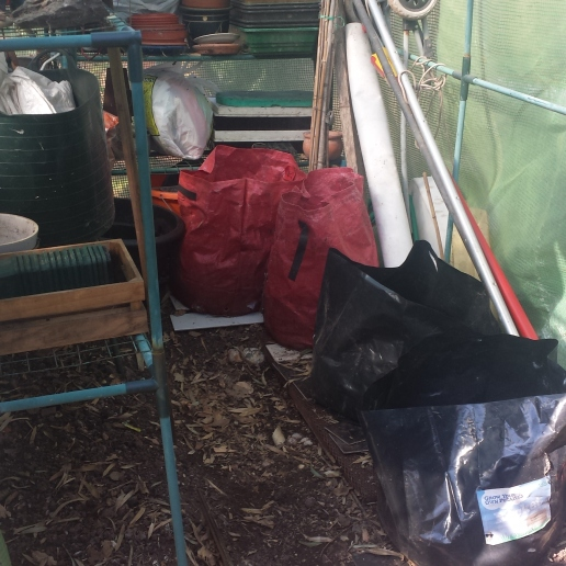 my storage greenhouse tidied