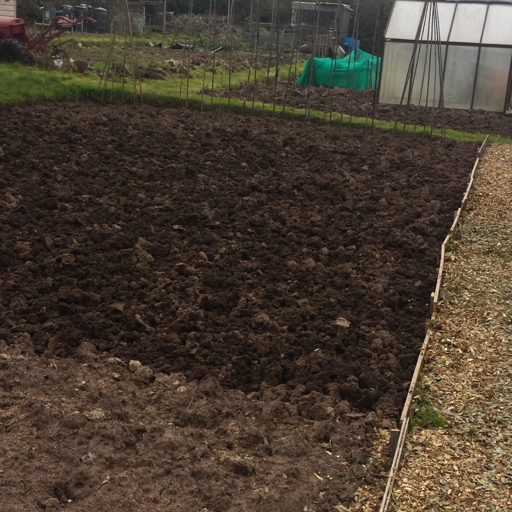 plot for parsnips/carrots