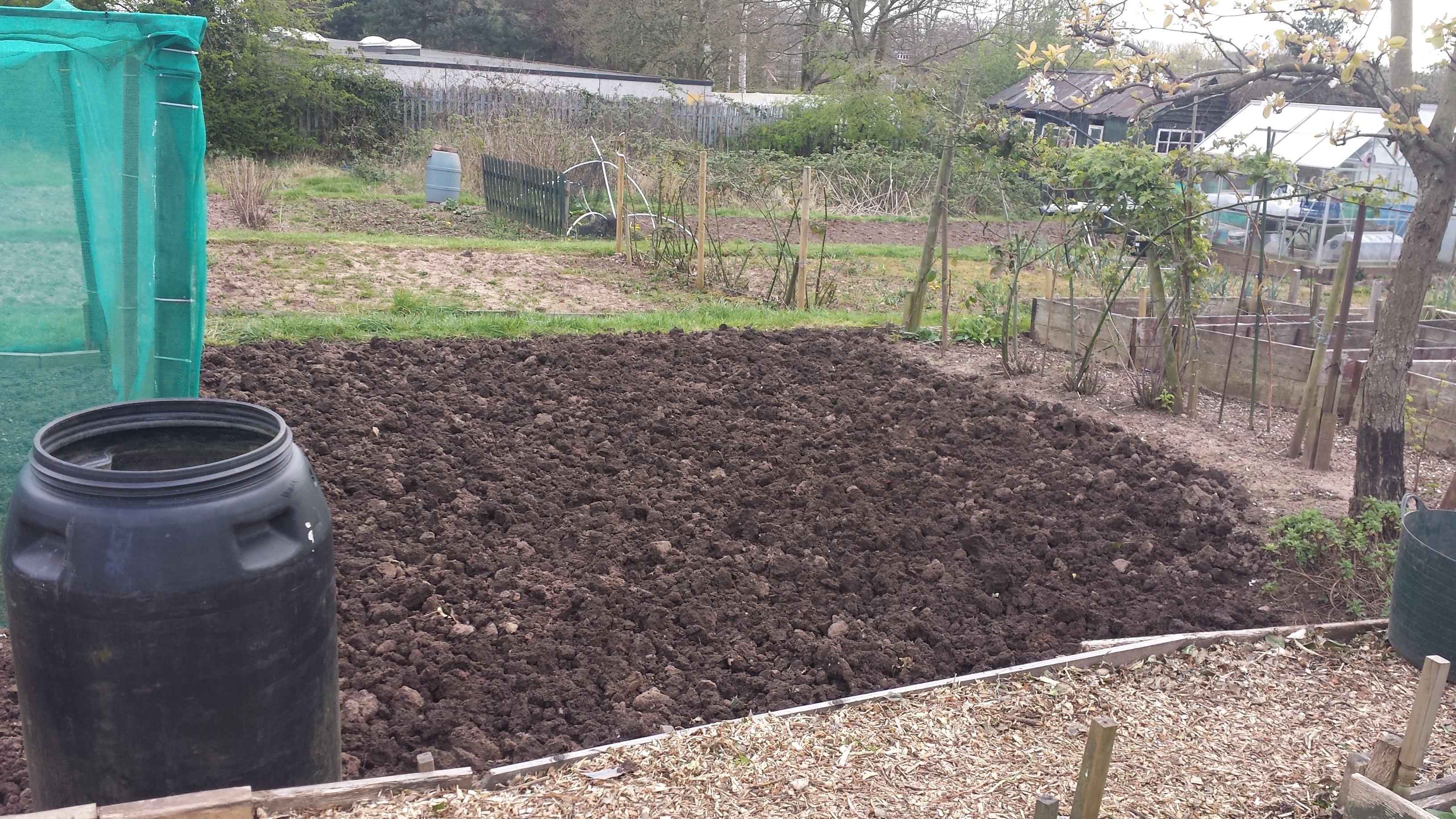 Plot for beetroot